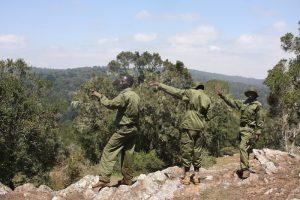 Rangers Kenya